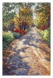 High Road Giclee Print by A.A. Pfannmuller