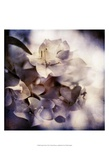 Purple Dusk I Prints by Emily Robinson