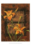 Day Lily II Posters by Janet Stever