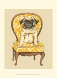 Pampered Pet I Posters by Chariklia Zarris