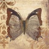Butterfly Kunstdrucke von Patricia Quintero-Pinto