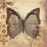 Butterfly Prints by Patricia Quintero-Pinto