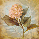 Pink Hydrangea Portrait Posters by Lanie Loreth
