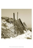Fences in the Sand I Print by Noah Bay