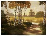 Country Walk II Prints by Graham Reynolds
