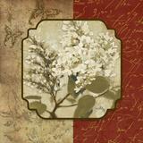 Tuscan Glimpse II Prints by Elizabeth Medley