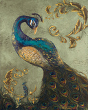 Peacock on Sage II Posters par Tiffany Hakimipour