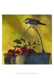 Apples and Chickadee Poster von Chris Vest
