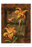 Day Lily I Prints by Janet Stever