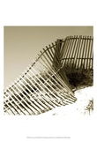 Fences in the Sand III Prints by Noah Bay