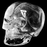 Aztec Rock Crystal Skull Photographic Print