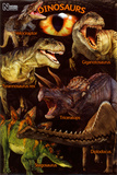 Dinosaurs - Natural History Museum Posters