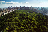 Central Park New York Photo