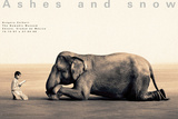 Boy Reading to Elephant, Mexico City Posters por Gregory Colbert