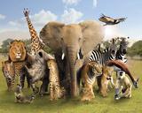 Wild World Plakaty