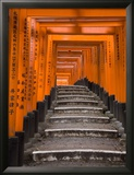 Torii Gates, Fushimi Inari Taisha Shrine, Kyoto, Honshu, Japan Framed Photographic Print by Gavin Hellier