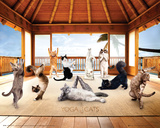 Yoga Cats-Hut Print