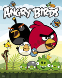 Angry Birds-Group Poster