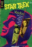 Star Trek: The Original Series Cover, Voodoo from Across Space, Dr. McCoy and Captain Kirk Poster