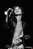 Rolling Stones- Mick Jagger-Icon Poster