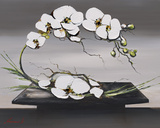 Happiness of White Orchids I Art by Olivier Tramoni