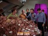 "Star Trek: The Original Series, Captain Kirk, Dr. McCoy and Spock in ""The Trouble with Tribbles"" Photo"