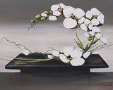 Happiness of White Orchid II Art par Olivier Tramoni