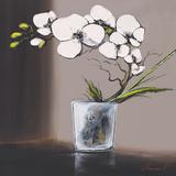 Swirls of White Orchids II Affiches par Olivier Tramoni