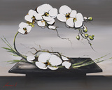 Happiness of White Orchids I Prints by Olivier Tramoni