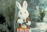 "Star Trek: The Original Series, The White Rabbit in ""Shore Leave"" Photo"