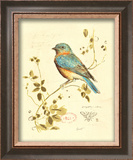 Gilded Songbird IV Prints by Chad Barrett