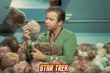 "Star Trek: The Original Series, Captain Kirk in ""The Trouble with Tribbles"" Prints"