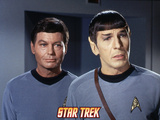 Star Trek: The Original Series, Spock and Dr. McCoy Posters
