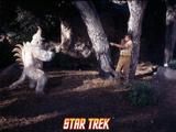 """Star Trek: The Original Series, Captain Kirk and Mugatu in """"A Private Little War"""" Photo"""