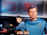 Star Trek: The Original Series, Mr. Spock and Dr. McCoy Posters