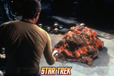 Star Trek: The Original Series, Captain Kirk and Horta Prints