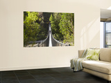 Person on Huon Swinging Bridge Over Huon River, Tahune Forest Reserve, Tasmania, Australia Prints by David Wall