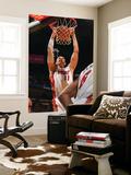 Detroit Pistons v Miami Heat: Zydrunas Ilgauskas Prints by Victor Baldizon