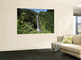 Akaka Falls State Park, Hawaii, USA Print by Douglas Peebles