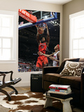 Toronto Raptors v Detroit Pistons: Amir Johnson and Charlie Villanueva Prints by Allen Einstein
