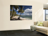 Playa El Frances Beach, El Frances, Samana Peninsula, Dominican Republic Prints by Walter Bibikow