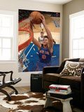 New York Knicks v Los Angeles Clippers: Danilo Gallinari Poster by Noah Graham