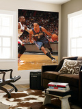 Charlotte Bobcats v Miami Heat: Shaun Livingston and Dwyane Wade Prints by Victor Baldizon