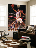 Memphis Grizzlies v Phoenix Suns: Josh Childress Poster by Barry Gossage