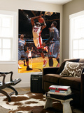 Charlotte Bobcats v Miami Heat: Joel Anthony Prints by Victor Baldizon