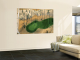 Golf Course, Phoenix, Arizona Posters