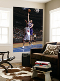 Los Angeles Lakers v Detroit Pistons: Pau Gasol and Ben Wallace Prints by Allen Einstein
