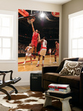 Houston Rockets v Toronto Raptors: Luis Scola and Amir Johnson Posters by Ron Turenne