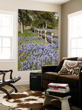 Lone Oak Tree Along Fence Line With Spring Bluebonnets, Texas, USA Poster by Julie Eggers