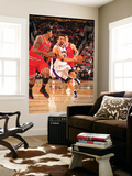 Chicago Bulls v Phoenix Suns: Hedo Turkoglu and James Johnson Posters by Barry Gossage